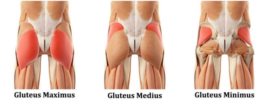 Muschii fesieri - importanta si exercitii, autor Roxana Carausu