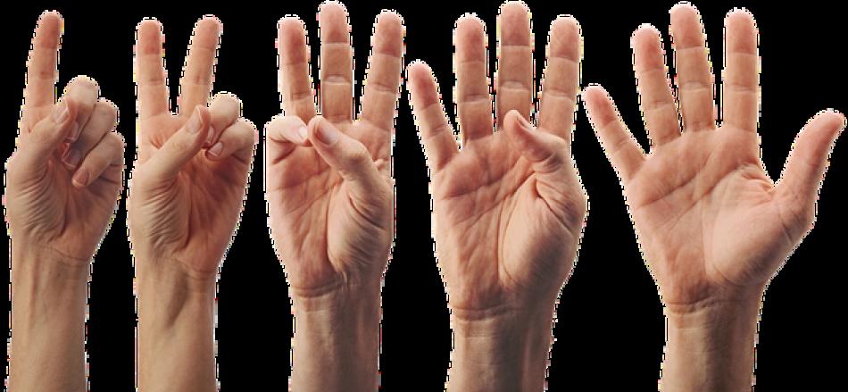 5 sfaturi pentru începatori, autor Alex Dumitru